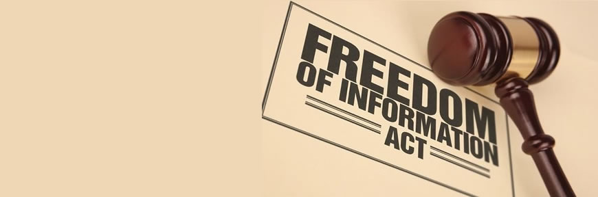 Background of the Freedom of Information Request in Nigeria